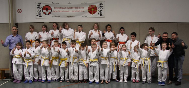 Judoka bestehen Prüfung