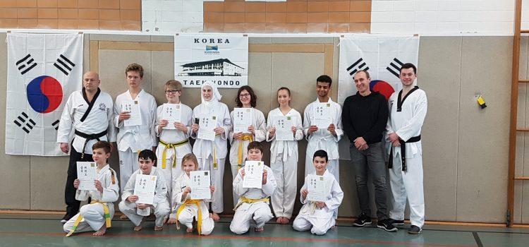 Taekwondo-Kup-Prüfung