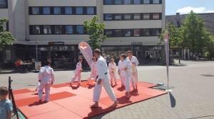 Altstadtfest 25.8.17-28.5.17